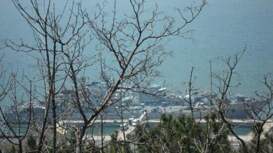 Port Athur: 旅顺港的舰艇