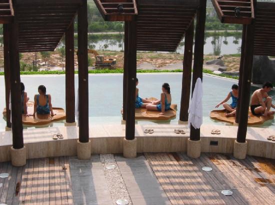 Dansuao Hotspring Resort : 温泉酒店眺望池