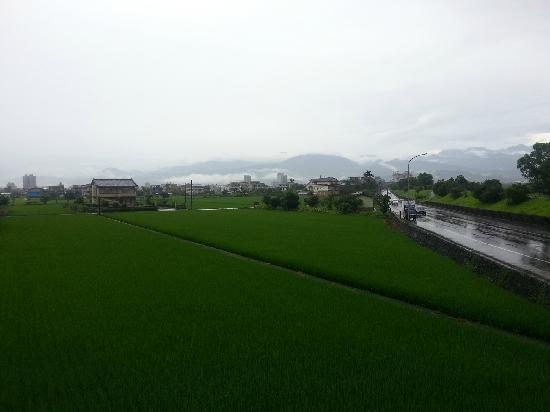 Jingyuanxiuxian Hostel: 静园外的风景