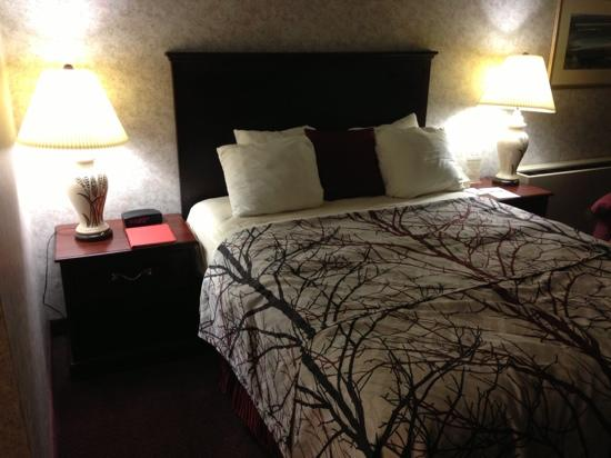 Best Western Plus Portsmouth Hotel & Suites : queen bed room