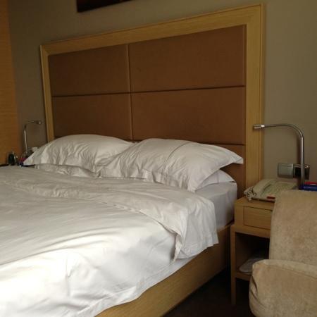 Garden International Hotel: 花园酒店单间