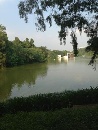Luhu Park : 麓湖
