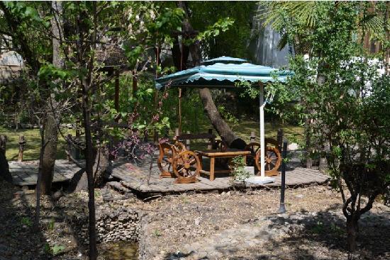 Back Garden Hostel: 照片描述