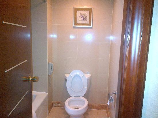Shenyang Sanlong Zhongtian Hotel : 卫生间
