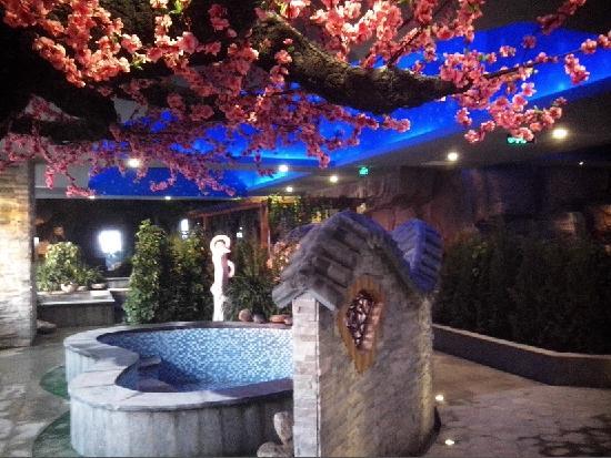 Yuanrun Tianmu Hot Spring Hotel: 室内温泉区