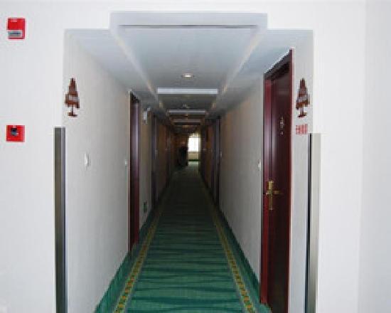 GreenTree Inn Hangzhou East Genshan Road Business Hotel: 走廊