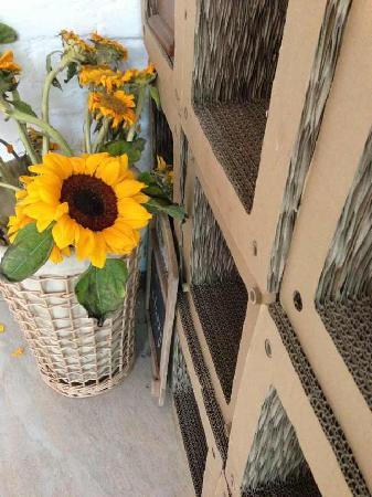 Oouyu Hostel: 向日葵