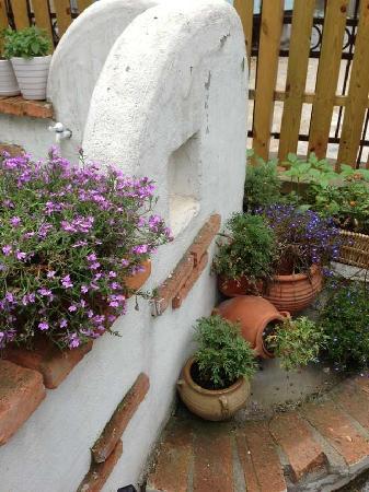 Oouyu Hostel: 鲜花。