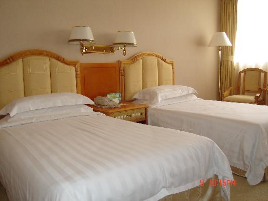 Overseas Chinese Hotel: 标准双床房