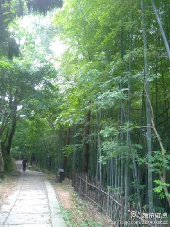 Haishan Park: 海山