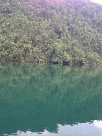 Dinghu Mountain Resort: 值得一去的地方
