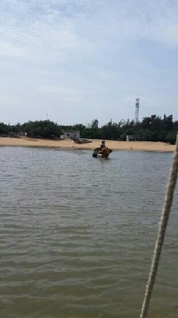 Coral Conservation Area of Jiaowei: 牛车来接
