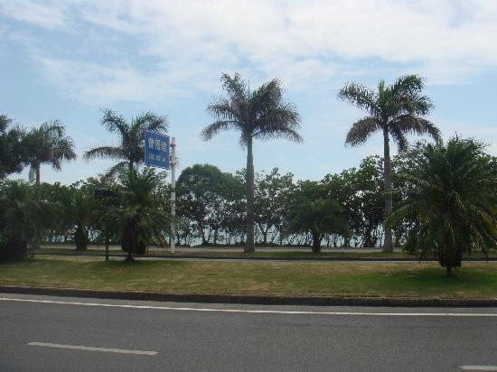 Lane 185 : 从酒店走出来不远的海边公路