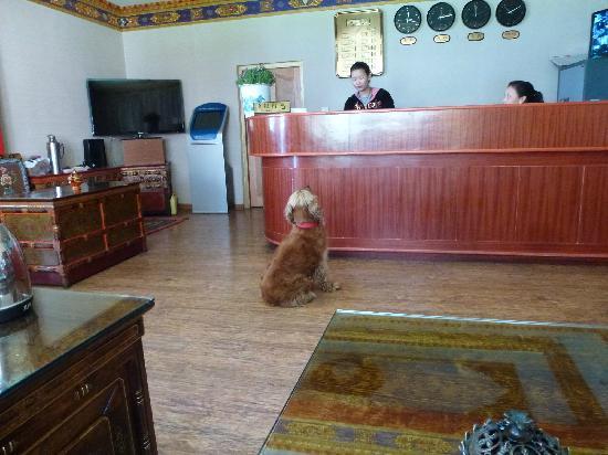 Banak Shol Hotel: 就是这两位在大堂值班的姑娘,为我保管了手机。