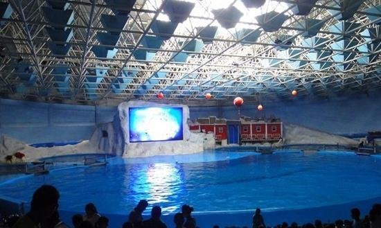 Ocean Aquarium of Penglai : 照片