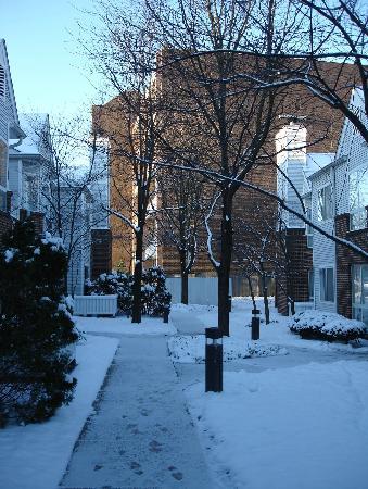 Residence Inn Cincinnati Blue Ash: 雪后的傍晚-Residence Inn Blue Ash