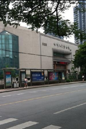 Sichuan University Museum (Sichuan Daxue Bowuguan) : 景点