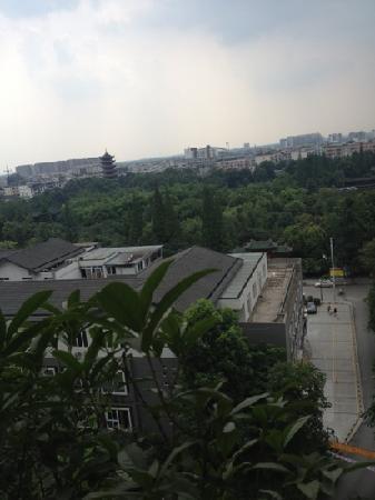 Tanghu Park: 棠湖公园绿树成荫