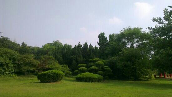 Hefei Botanical Garden: 景色