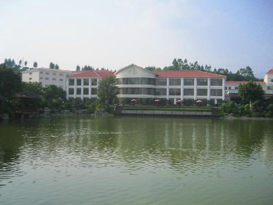 Grand Winner International Hotel : 酒店的湖水正绿