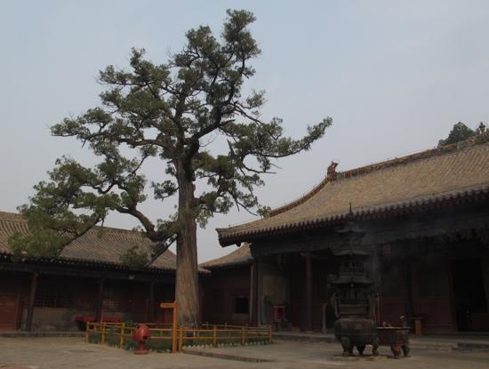 Hongdong County, China: 广胜寺