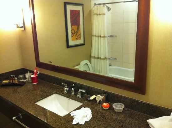 Chicago Marriott at Medical District/UIC: bath room