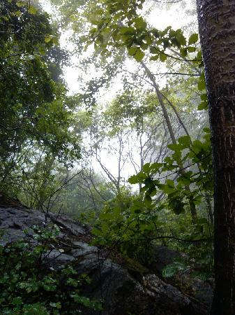 Fuping County, China: 山林中穿行