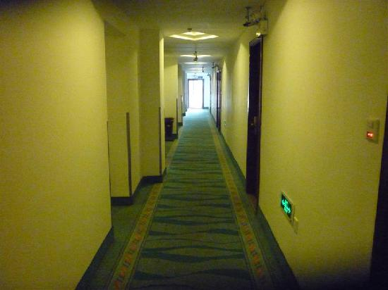GreenTree Inn Shanghai Hongqiao Airport No.2 Express Hotel: 走廊