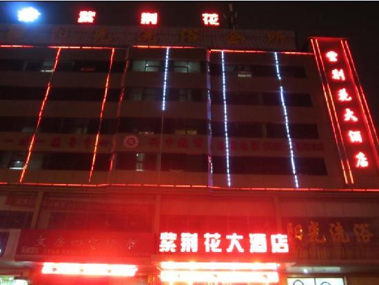 Zi Jing Hua Hotel: 照片描述