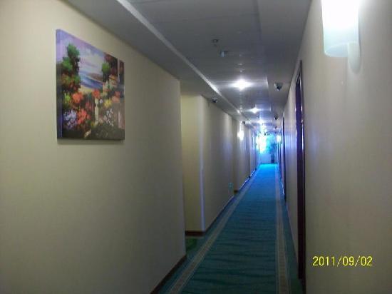 GreenTree Inn Shanghai Zhangjiang Business Hotel: 走廊
