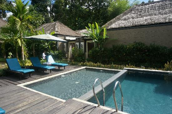 Bali Rich Luxury Villas Ubud: villa's pool