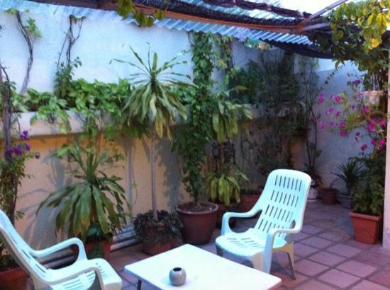 Roof Top Guest House Melaka: 花园