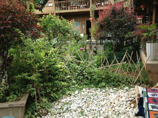 The Bruce Chalet: 这是院子