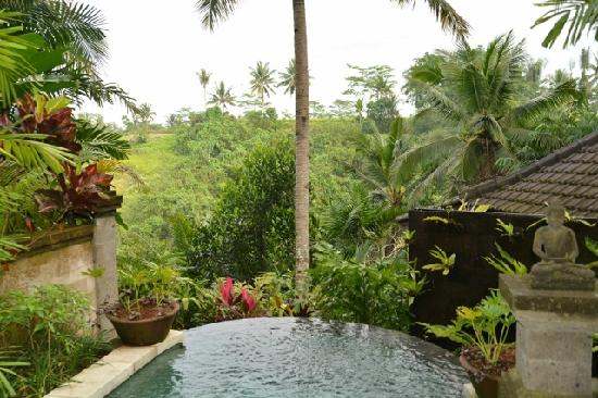 Bidadari Private Villas & Retreat: view