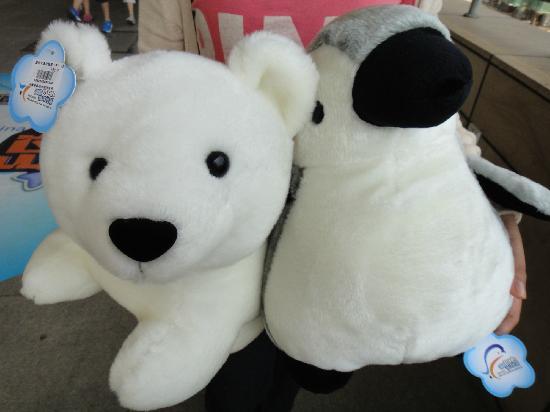Tianjin Haichang Polar Ocean World : 好喜欢@!~