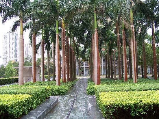 Yan Han Shan Hotel: 通往酒店的路