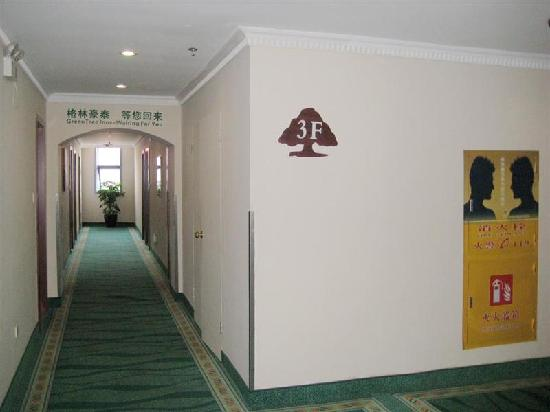 GreenTree Inn Shanghai Wujiaochang Business Hotel : 走廊