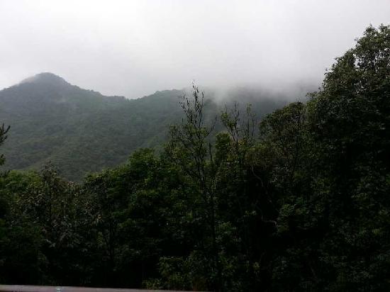 Nankun National Forest Park : 南昆山森林公园