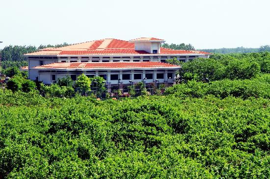 Liyuan Hotel : 绿翡翠中的红宝石