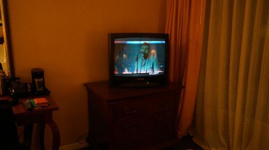 Garden Inn & Suites: 电视
