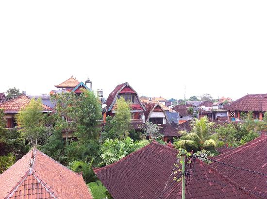 Kori Bali Inn: 窗外景色