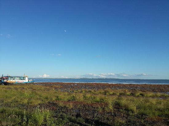 Wulan Butong Grassland: 达里湖