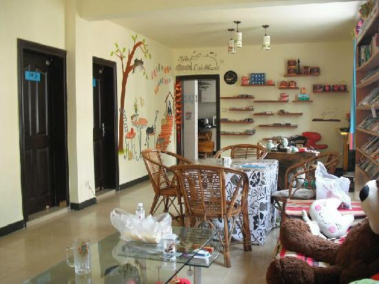 Dozycat Youth Hostel: 这是懒猫的客厅,很有温馨的家的感觉