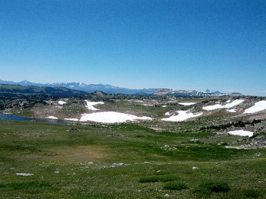 Beartooth Plateau: 高原