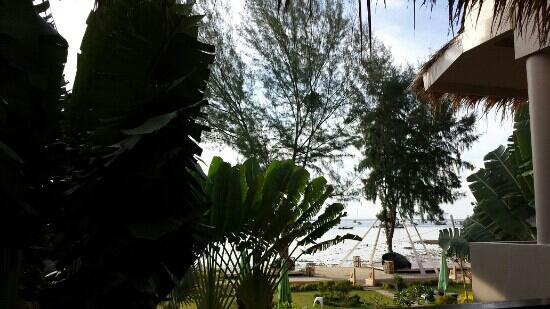 Mama Beach Residence: 从房间眺望海湾