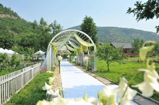 Lvgu Taohuayuan Villa Hotel: 3497