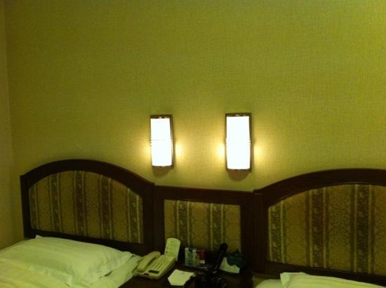 Yalu River Hotel : 简陋的灯具