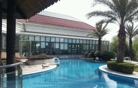Renji Hotel : 游泳池