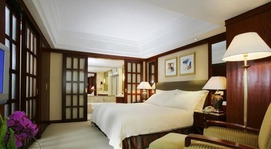 Landison Plaza Hotel: 房间