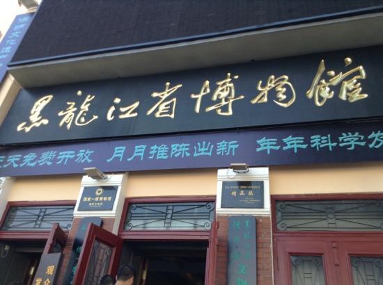 Heilongjiang Museum : 博物馆
